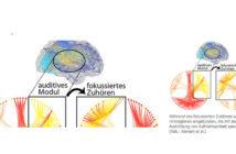 Während des fokussierten Zuhörens werden auch Hirnregionen eingebunden, die mit der gezielten Ausrichtung von Aufmerksamkeit assoziiert sind © Alavash et al. / Universität zu Lübeck