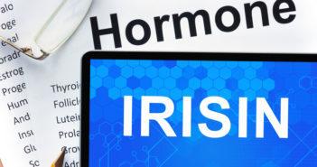 Hormon Irisin © designer491 / shutterstock.com