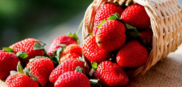 Die Erdbeere zeigt auch verschiedene positive gesundeitliche Effekte. © minicase / shutterstock.com
