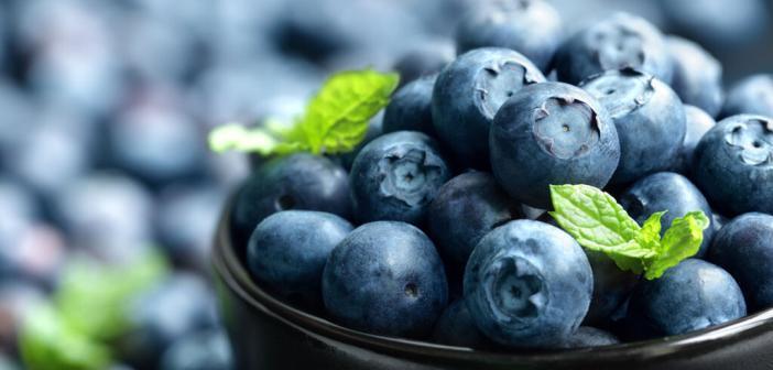Superfood Heidelbeere – auch Schwarzbeere oder Blaubeere genannt. -Brian A Jackson-shutterstock