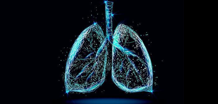 Zahlreiche Studien zeigten einen Zusammenhang zwischen frühkindlichen Ereignissen und späteren Lungenerkrankungen. © IRINA SHI / shutterstock.com