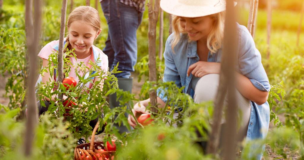 Gartenarbeit Unterstützt Körper Und Seele