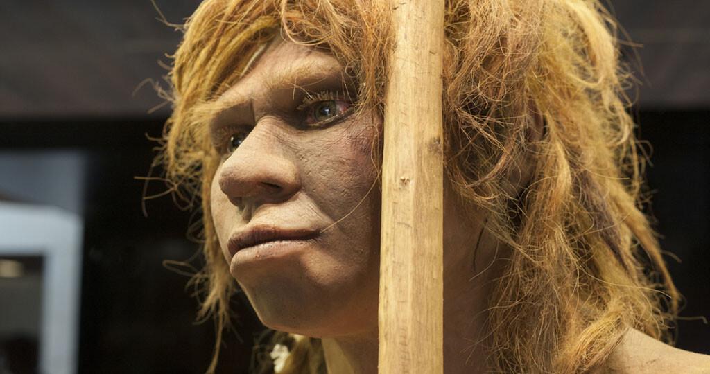Neandertaler © Juan Aunion / shutterstock.com