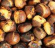 Leckere gebratene Kastanien sind auch gut bei hohem Cholesterin. © ChiccoDodiFC / shutterstock.com