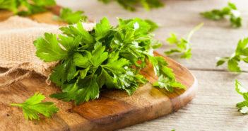 Zahlreiche Vitamine und Mineralstoffe machen das Suppenkraut so gesund den Körper. © Brent Hofacker / shutterstock.com