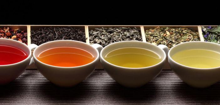 Tee ist schmackhaft und gut für die Gesundheit. © Shulevskyy Volodymyr / shutterstock.com